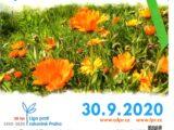 den proti rakovine